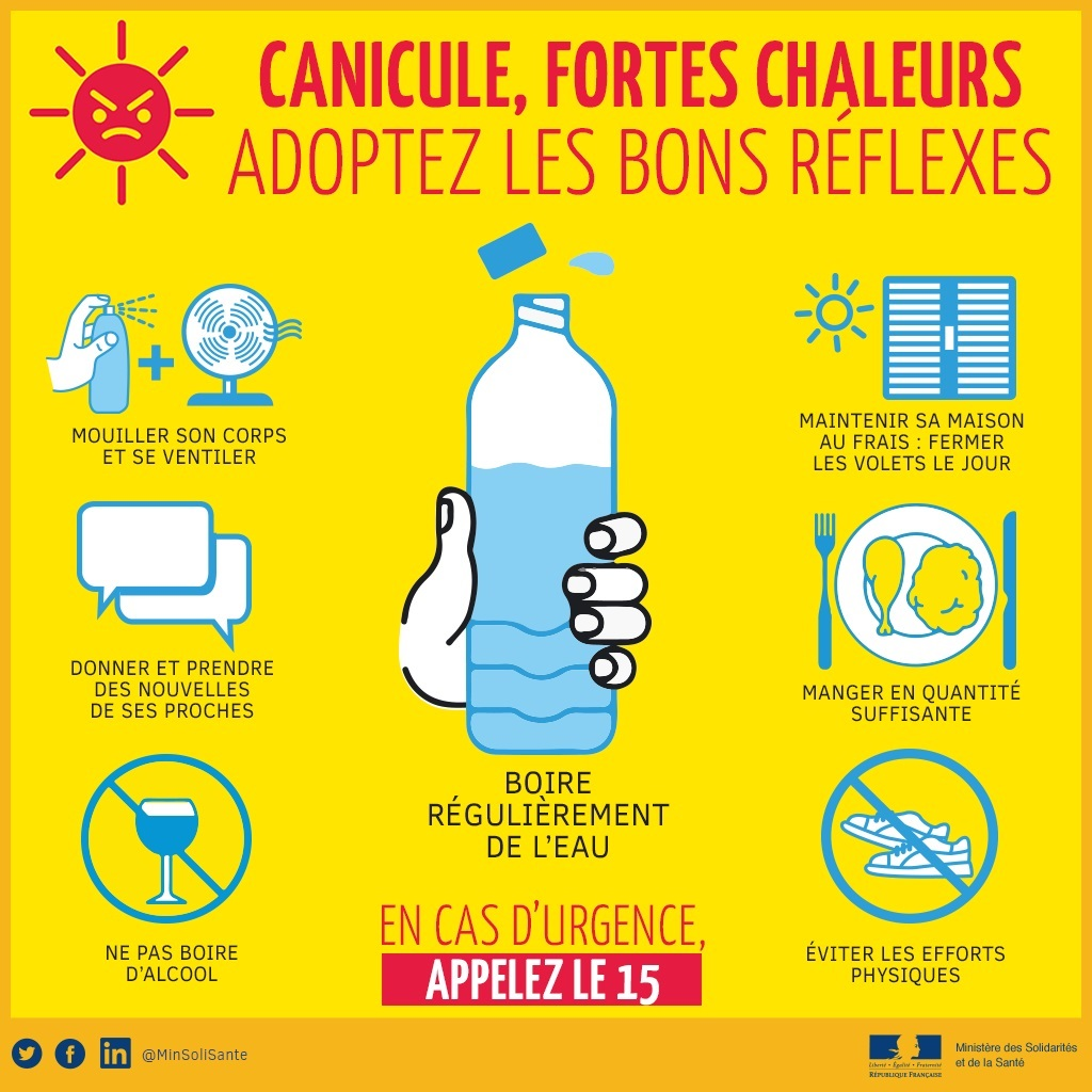 CANICULE-Tw6